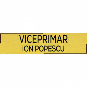 "Placuta usa ""Viceprimar"""