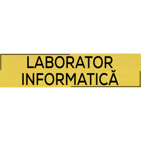 "Placuta usa ""Laborator informatica"""